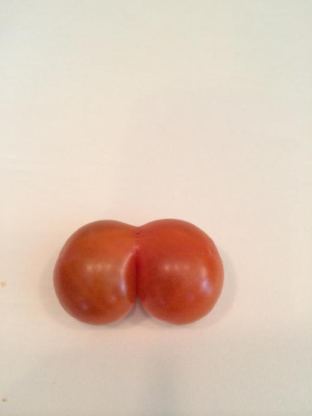 tomato butt1